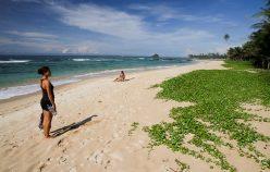 De plage en plage, au Sri Lanka