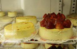 Cheesecake at Veniero
