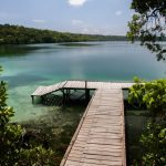 [:fr]Le lac de Kakaban[:en]Kakaban Lake[:]