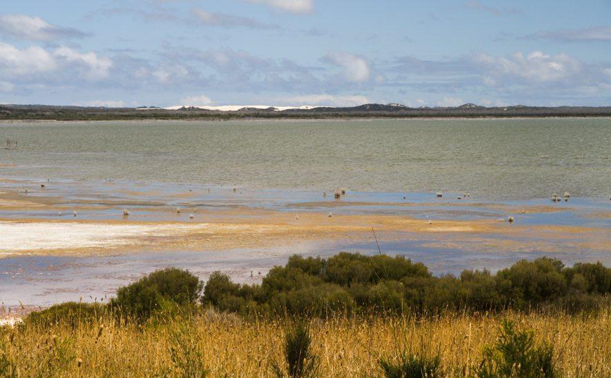 Bald Hill, Kangaroo Island