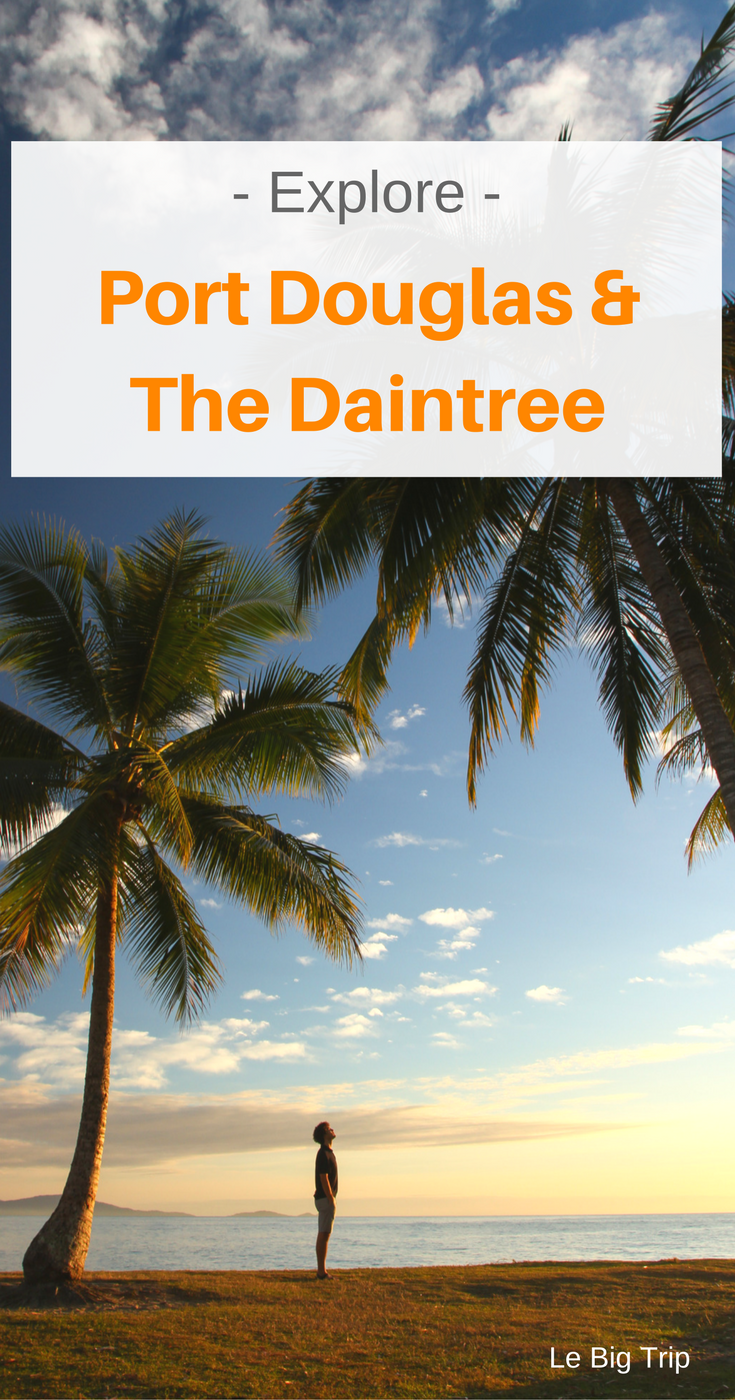 Discover why you should visit the Daintree rainforest and Port Douglas as well as the top activities to do for a perfect getaway.