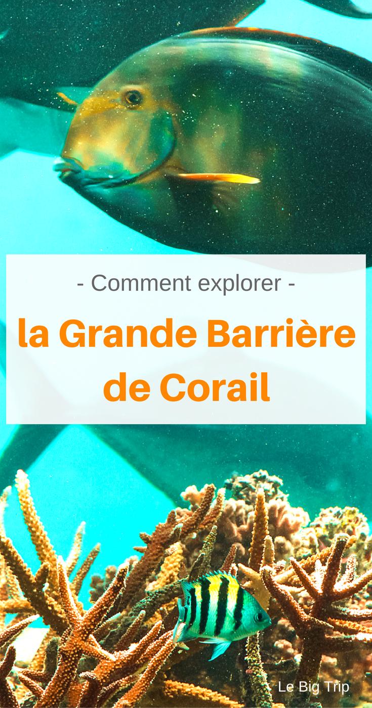 Comment explorer la Grande Barrière de Corail