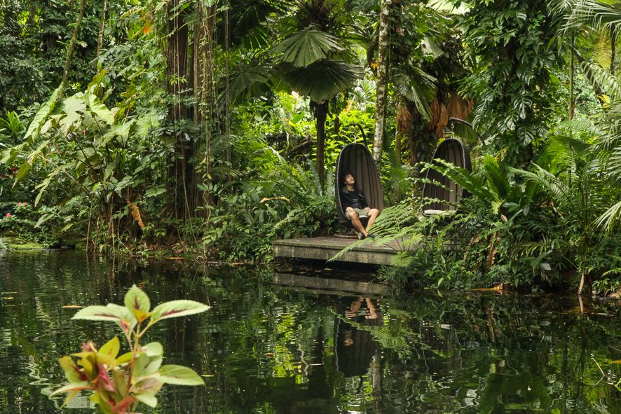 The perfect weekend gateway in the Daintree