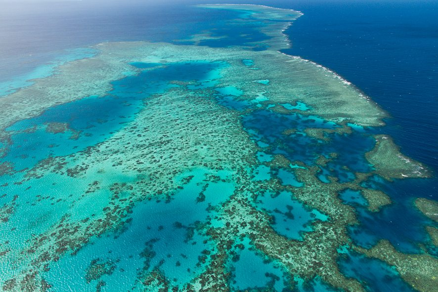 Fly and Cruise the Great Barrier Reef