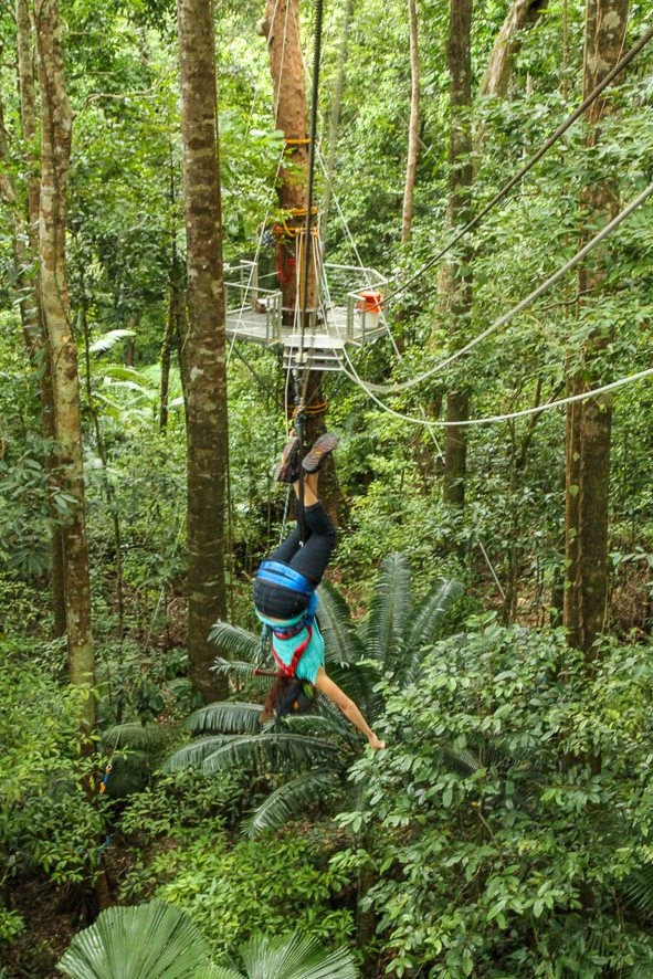 Complete guide for the Daintree and Port Douglas