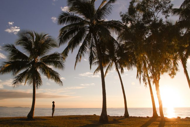 Top things to do at the Daintree Rainforest and Port Douglas