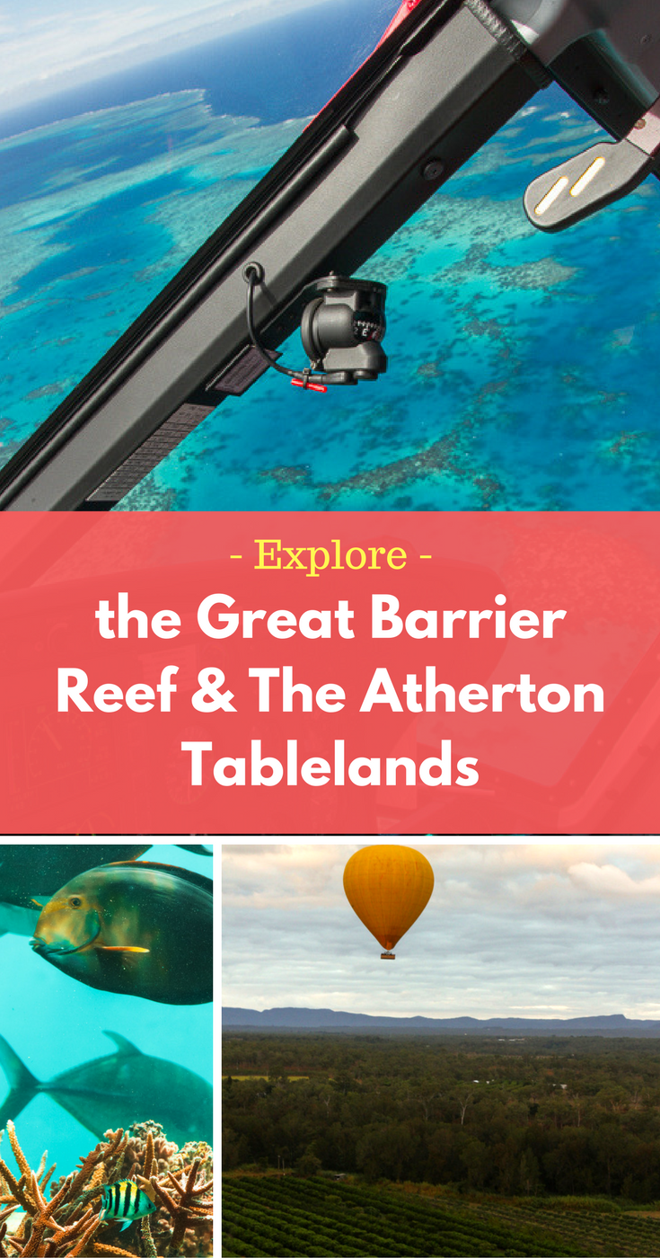 Explore the Great Barrier Reef and the Atherton Tablelands