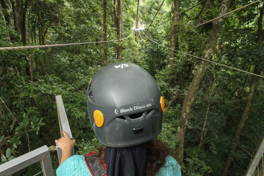 Ziplining in the Daintree