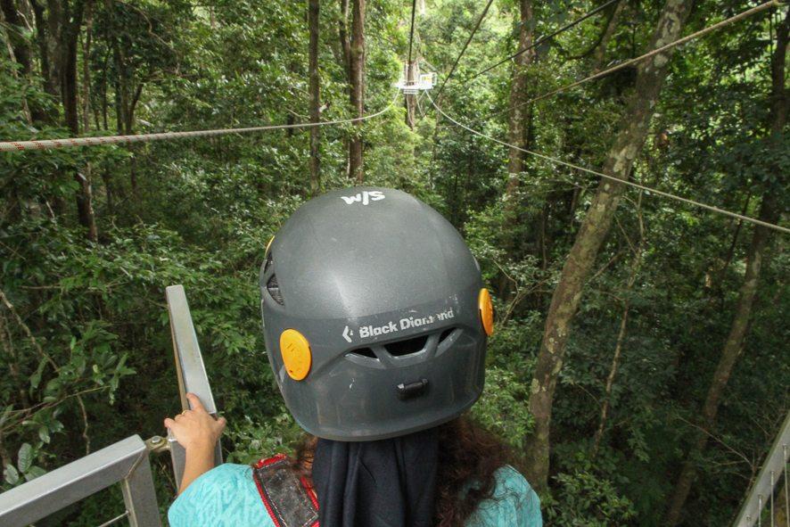 Ziplining in the Daintree