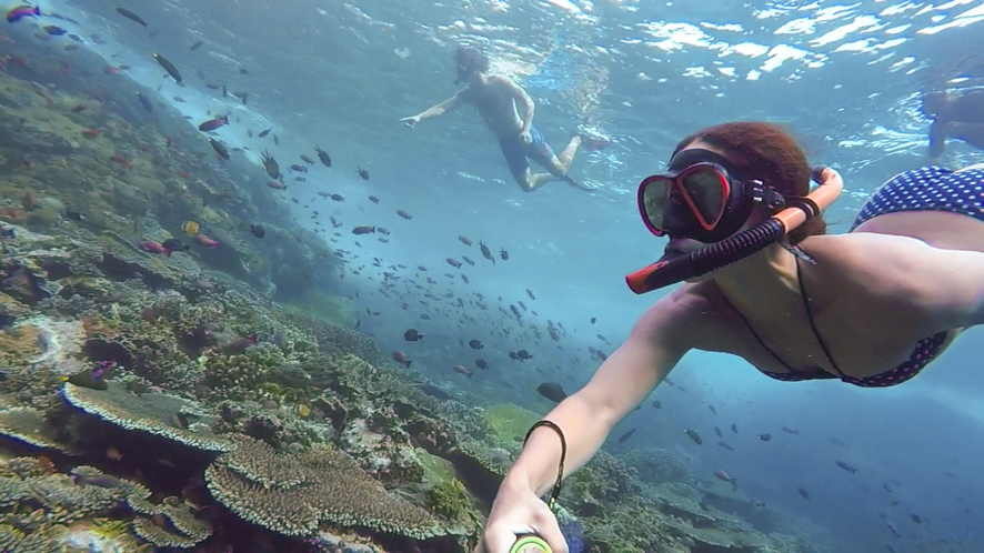 Komodo was one of the most wonderful places to snorkel in the world