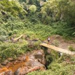 Walking on a bamboo bridge at Murunda 'o Muru waterfall