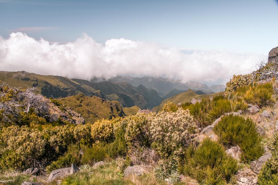 Views on Achada do Teixeira trail