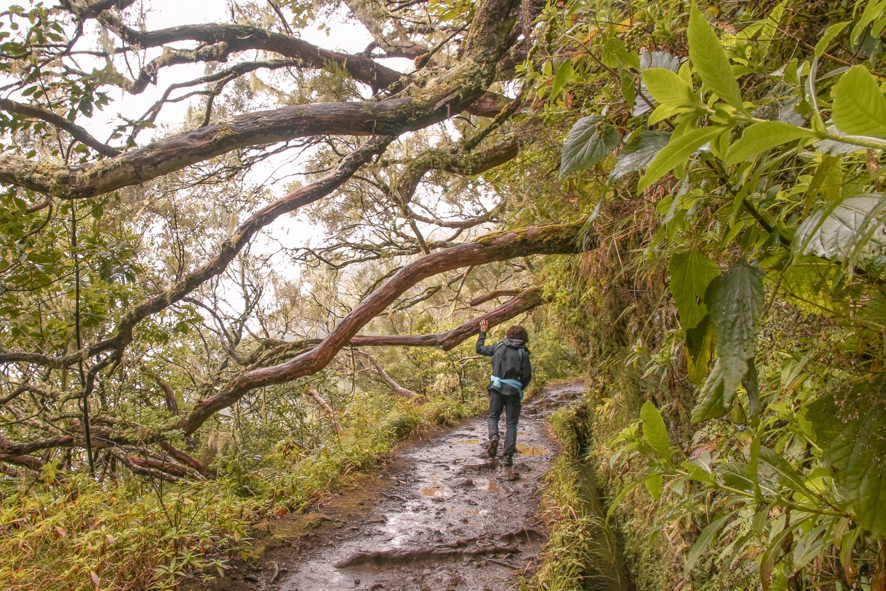 On the Caldeirao Verde trail in the Quemadas